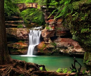 beautiful, green, and experience image