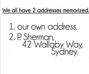 nemo, finding nemo, and address image