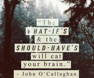 quotes, brain, and life image