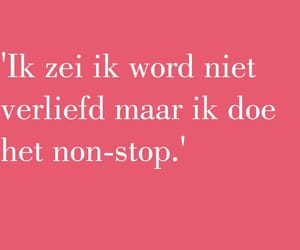 dutch, words, and tekst image