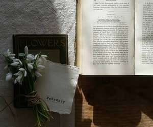 books, tumblr, and cozy image