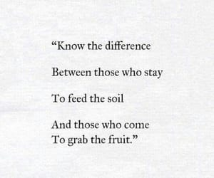 fruit, know, and meaningful image