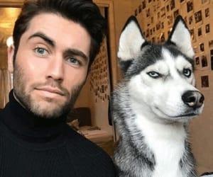 dog, boy, and lovely image