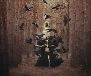 crow, goddess, and celt image