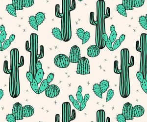 cactus, green, and background image