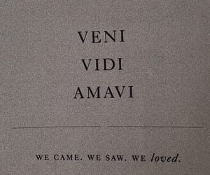 quotes, amavi, and words image