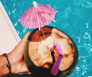 coconut, fruit, and pool image