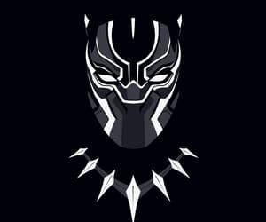 black panther and wakanda image