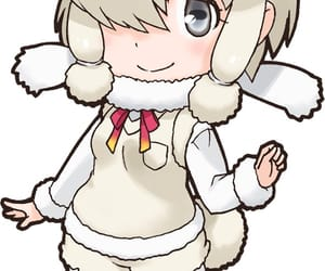 suri alpaca image