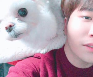 asian boy, kpop, and puppy image