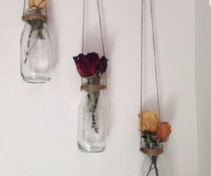 flowers, rose, and diy image