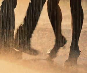 tango, dance, and rain image