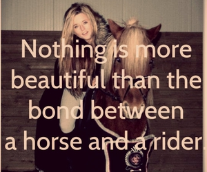 beautiful, horse, and quote image