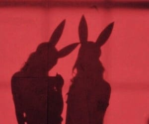 girl, bunny, and shadow image