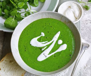 healthy, mint, and soup image