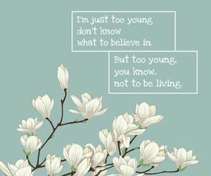 fall out boy, Lyrics, and quotes image
