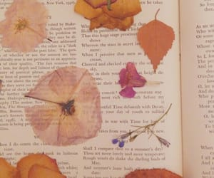 flowers, book, and aesthetic image