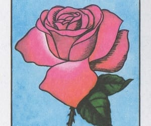loteria, rose, and mexico image