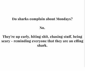 text, text post, and monday motivation image
