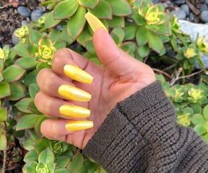 yellow nails image