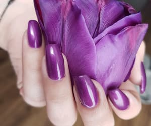 art, nails, and tulip image