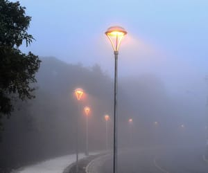 cold, dawn, and fog image