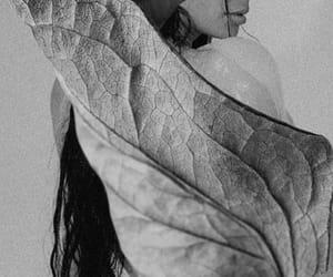 b&w, celebrity, and leaf image