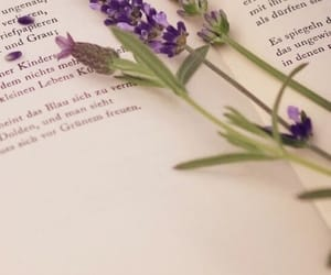 book, flowers, and wallpaper image