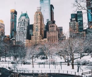 Central Park, travel, and new york image