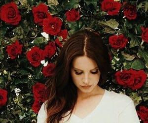 lana del rey, lana, and rose image