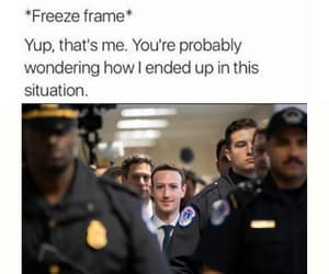 facebook, funny, and meme image