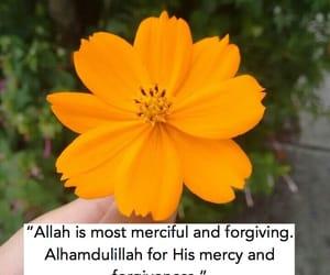 allah, muslims, and ameen image