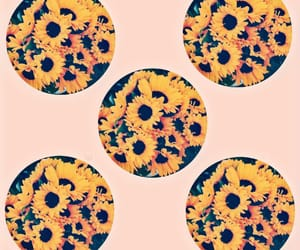 background, sunflower, and flowers image