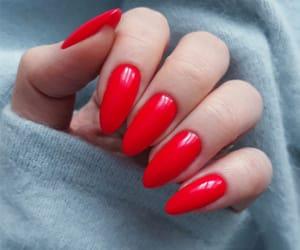manicure, lakiery do paznokci, and pedicure image