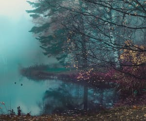 beautiful, fog, and grunge image
