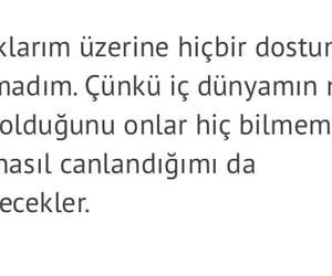 stefan, türkçe, and zweig image