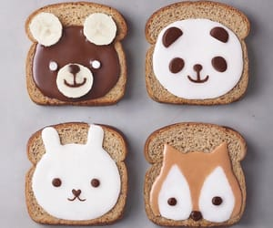 food, animals, and breakfast image