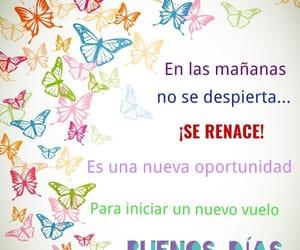 buenos días, amanecer, and frases español image