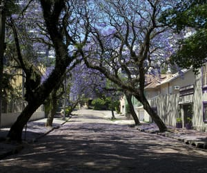 brasil, brazil, and buildings image