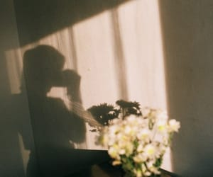 flowers, vintage, and shadow image