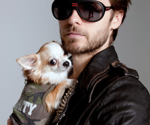 jared leto, 30 seconds to mars, and dog image