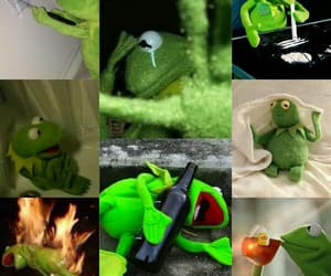 aesthetic, kermit, and memes image