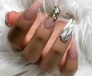 fur, gold, and light pink image