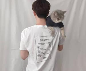 cat, boy, and soft image