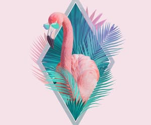 aesthetic, wallpaper, and flamingo image