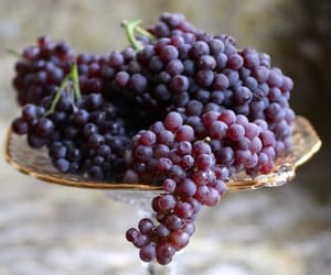fruit and grapes image