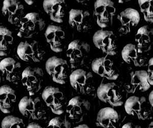 aesthetic and skulls image