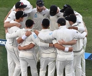cricket and black caps image