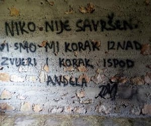 graffiti, quotes, and croatian quotes image