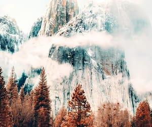 autumn, fog, and cloud image